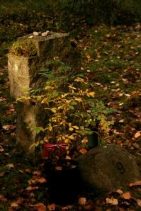 Ved grav ni ble seks engelskmenn skutt. Fem av de var med på den første tungtvannsaksjonen, som mislyktes.
