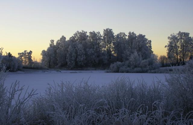 rh vinter